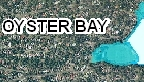 oyster_bay